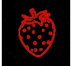 Lyophilized berry